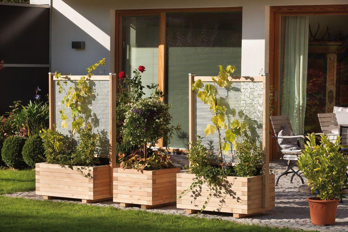 wundersch nen pflanztr ge mit sichtschutz einzigartige ideen zum sichtschutz. Black Bedroom Furniture Sets. Home Design Ideas